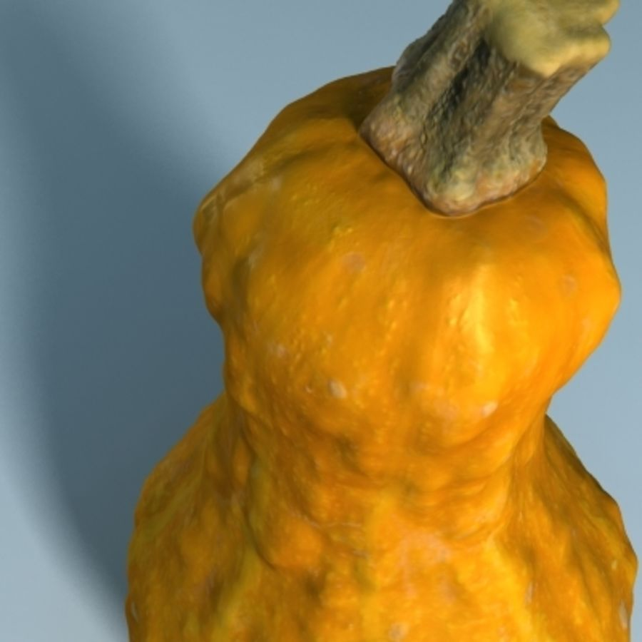 Gourd (High Res) royalty-free 3d model - Preview no. 9