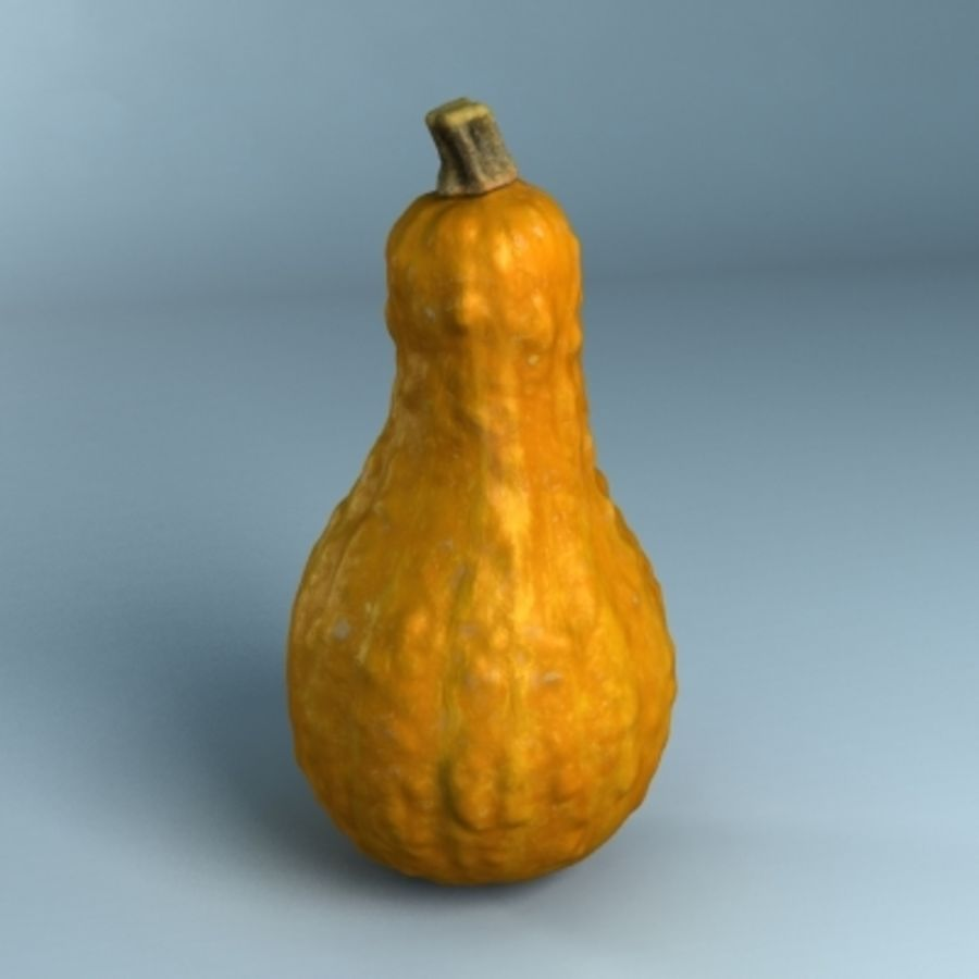 Gourd (High Res) royalty-free 3d model - Preview no. 5