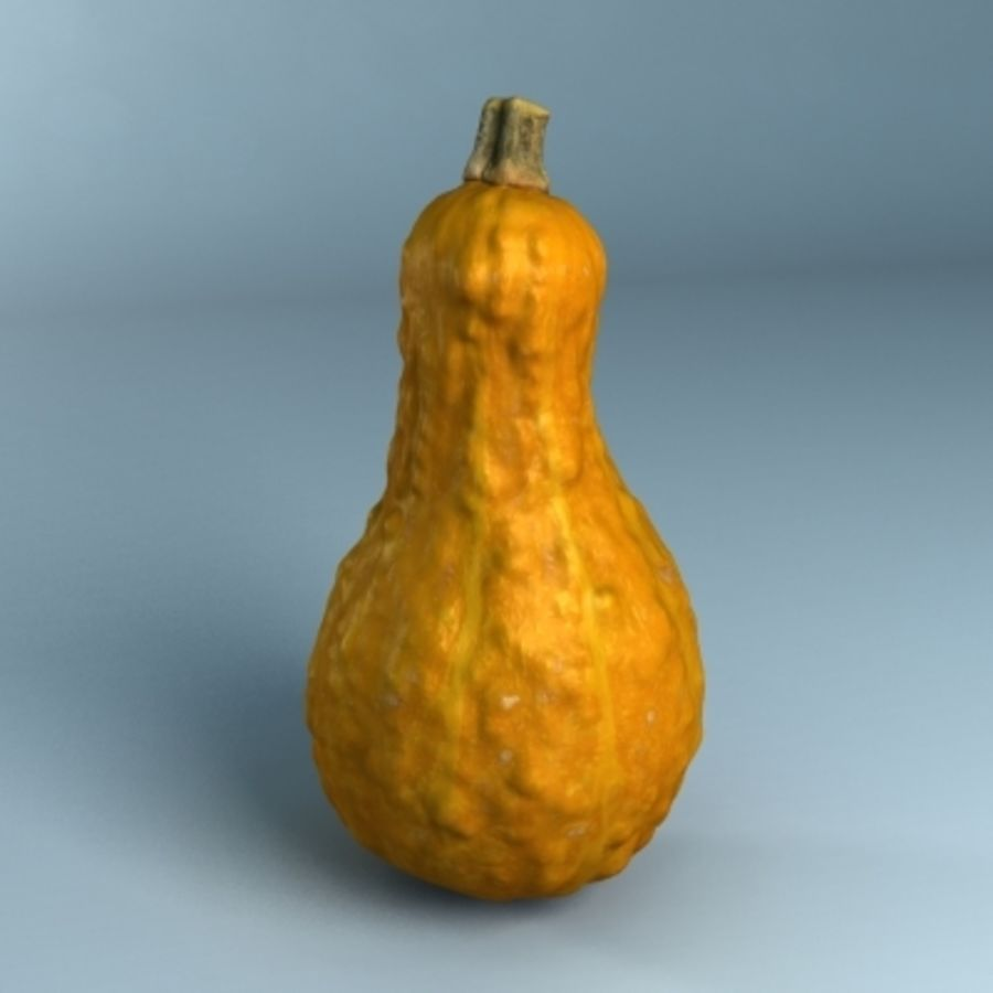 Gourd (High Res) royalty-free 3d model - Preview no. 7