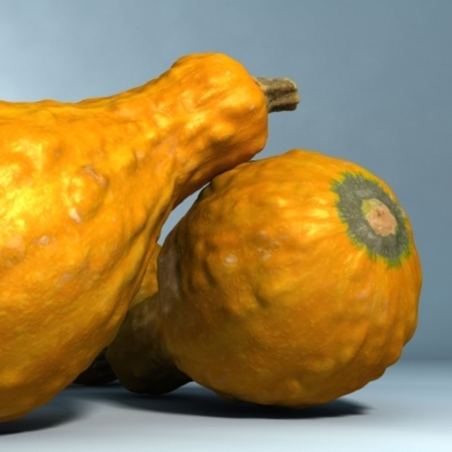 Gourd (High Res) royalty-free 3d model - Preview no. 1