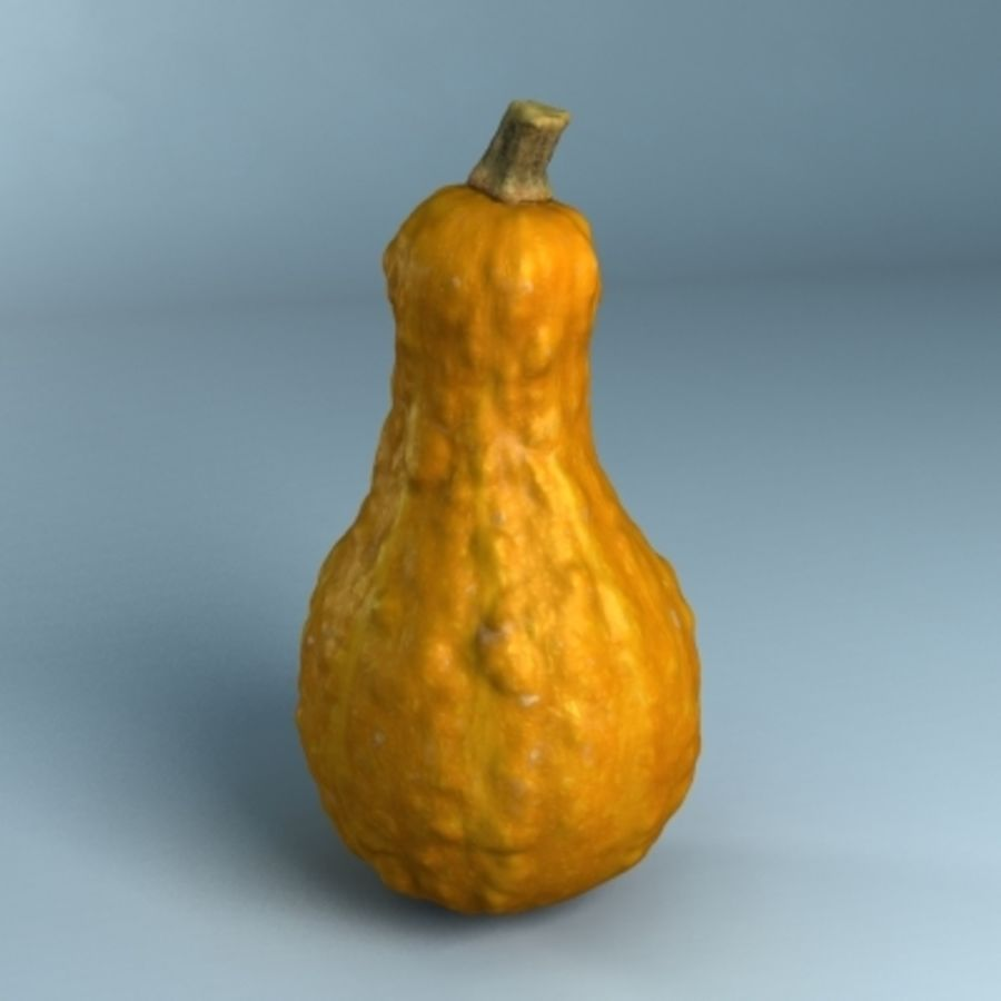 Gourd (High Res) royalty-free 3d model - Preview no. 3