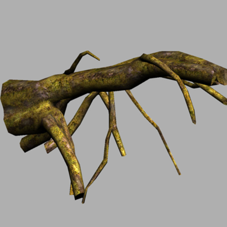 Tree Roots Drijfhout UDK royalty-free 3d model - Preview no. 3