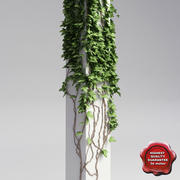Column with ivy V1 3d model