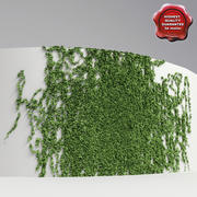 Wall with ivy V1 3d model