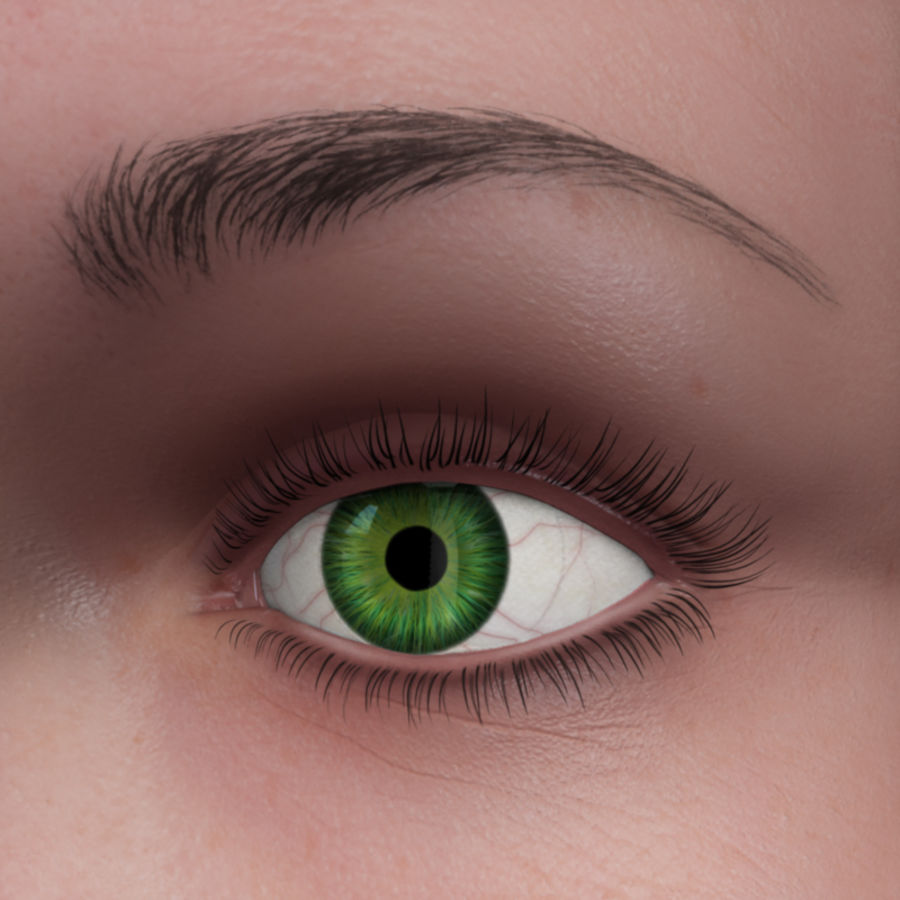 Menschliches Auge royalty-free 3d model - Preview no. 2