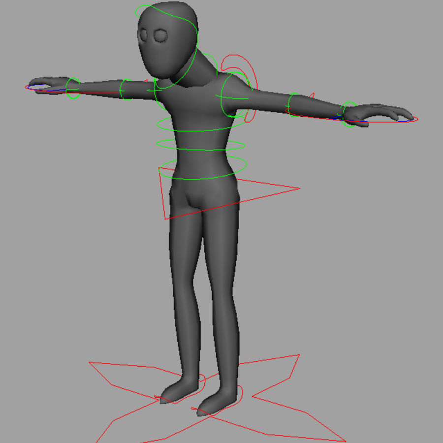 rig royalty-free 3d model - Preview no. 2