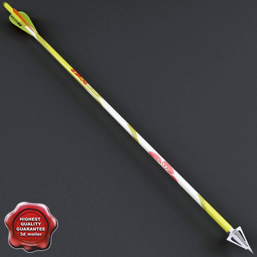 Спорт Стрелка royalty-free 3d model - Preview no. 1