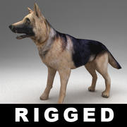 German shepherd rigged 3d model