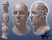 Głowa 1 3d model
