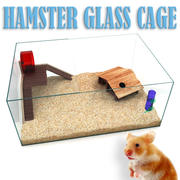 Hamster Glass Cage 3d model