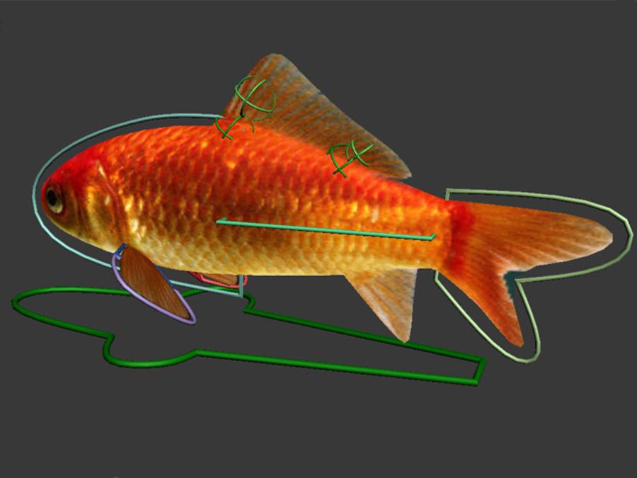 Akvaryum balığı royalty-free 3d model - Preview no. 3