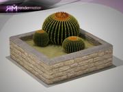 D2.C1.12 Cactus Ornamental-Cacto De Ornato modelo 3d