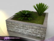 (2) D2.C1.22 Neomarica Palms (On Planter) 3d model