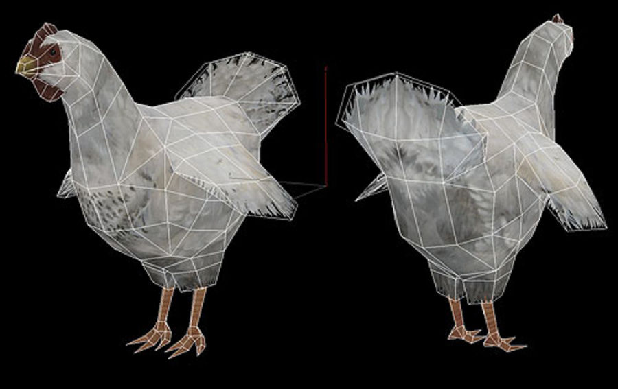Poulet Blanc royalty-free 3d model - Preview no. 4