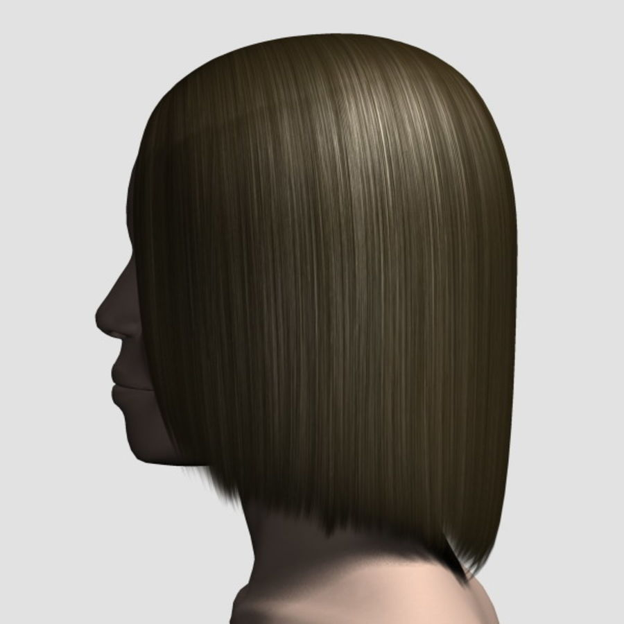 Hair_Mesh_05 royalty-free 3d model - Preview no. 2