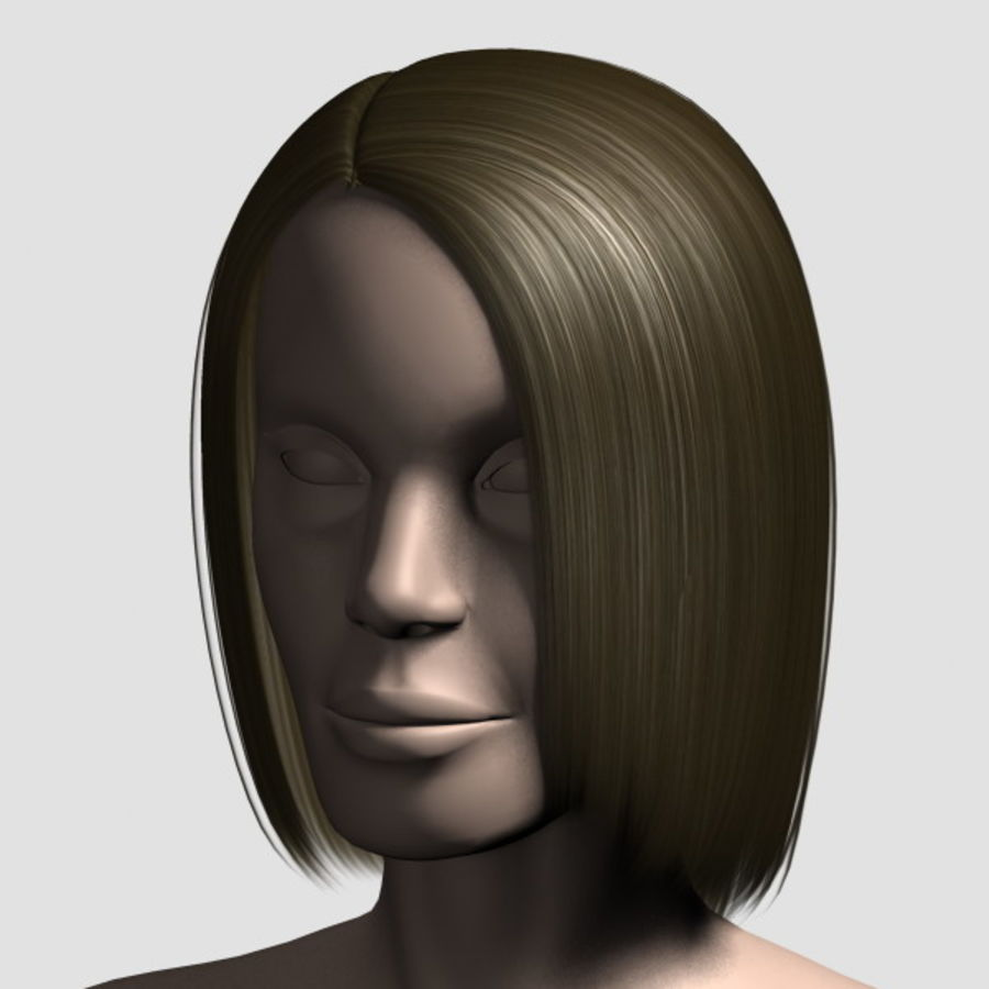 Hair_Mesh_05 royalty-free 3d model - Preview no. 1
