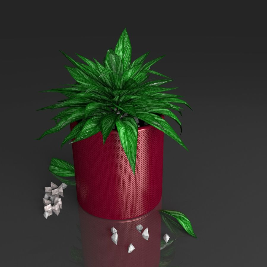 Tropical house plant royalty-free 3d model - Preview no. 13