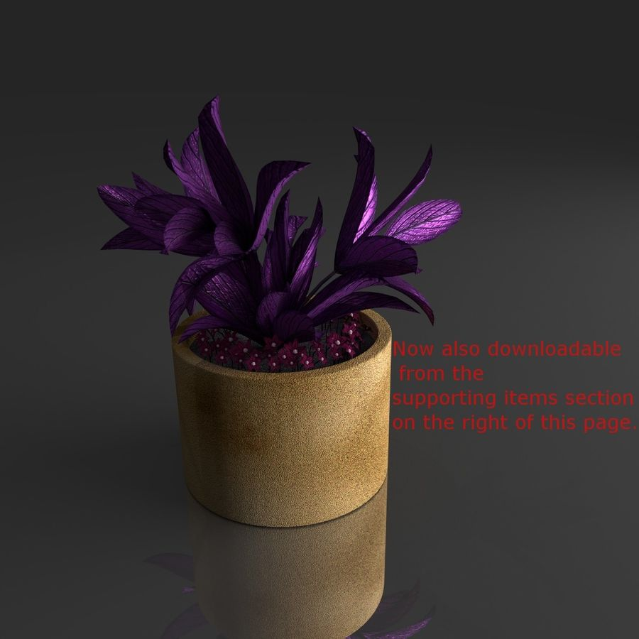 Tropical house plant royalty-free 3d model - Preview no. 11