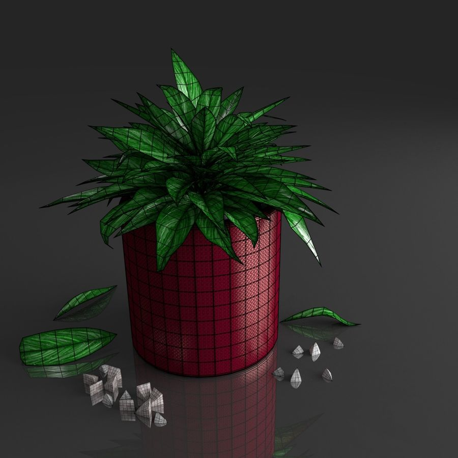 Tropical house plant royalty-free 3d model - Preview no. 14