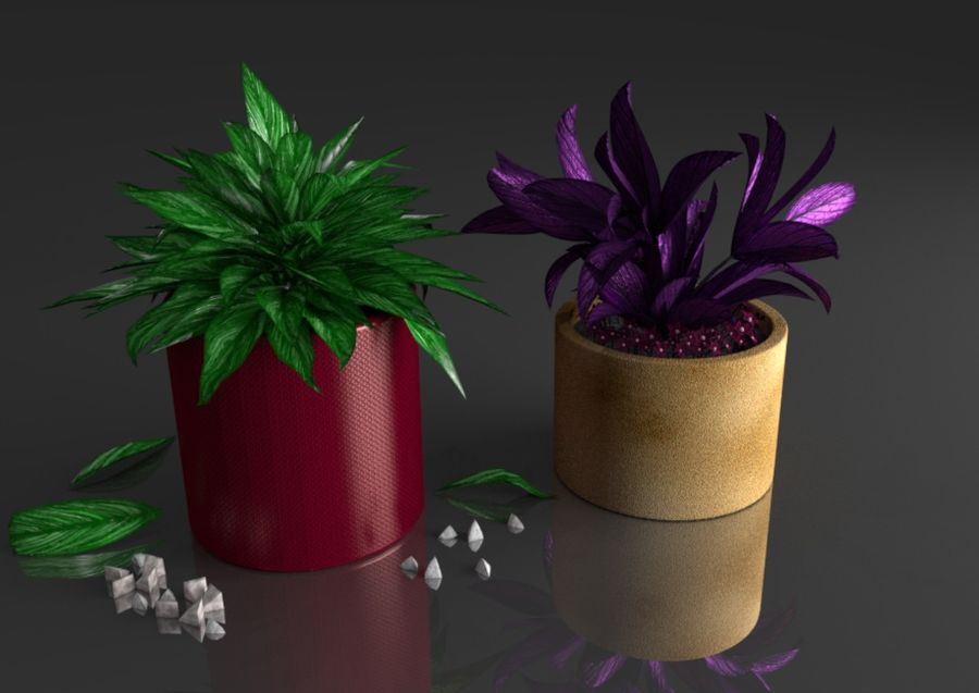 Tropical house plant royalty-free 3d model - Preview no. 3