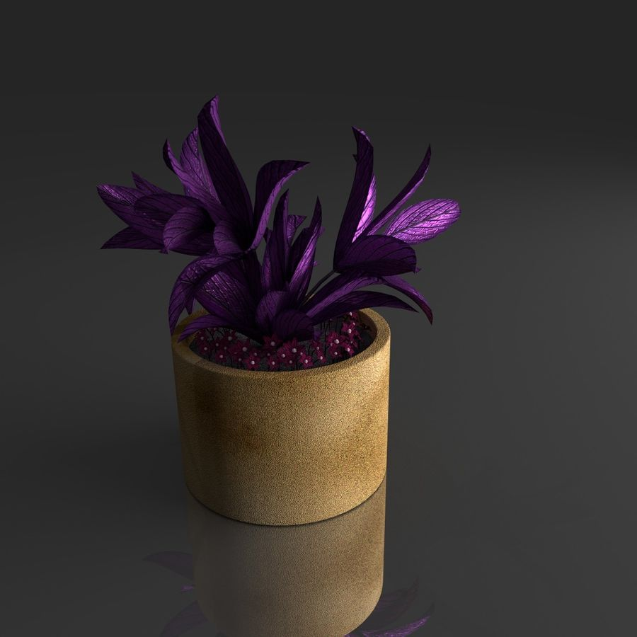 Tropical house plant royalty-free 3d model - Preview no. 10