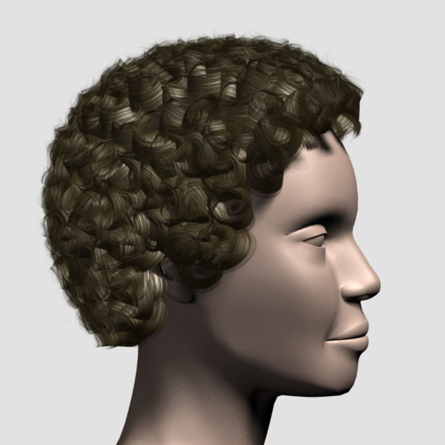 Hair_Mesh_07 royalty-free 3d model - Preview no. 4