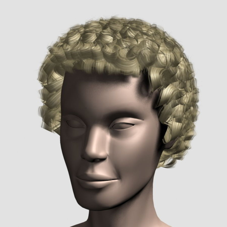 Hair_Mesh_07 royalty-free 3d model - Preview no. 8