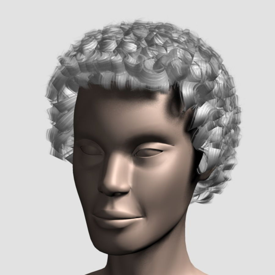 Hair_Mesh_07 royalty-free 3d model - Preview no. 13