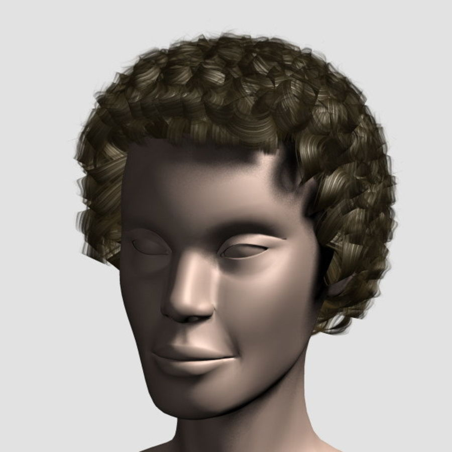 Hair_Mesh_07 royalty-free 3d model - Preview no. 1