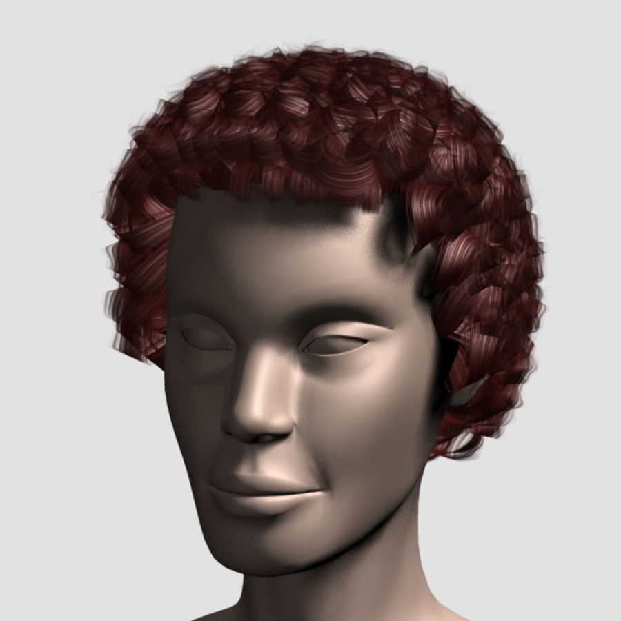 Hair_Mesh_07 royalty-free 3d model - Preview no. 12