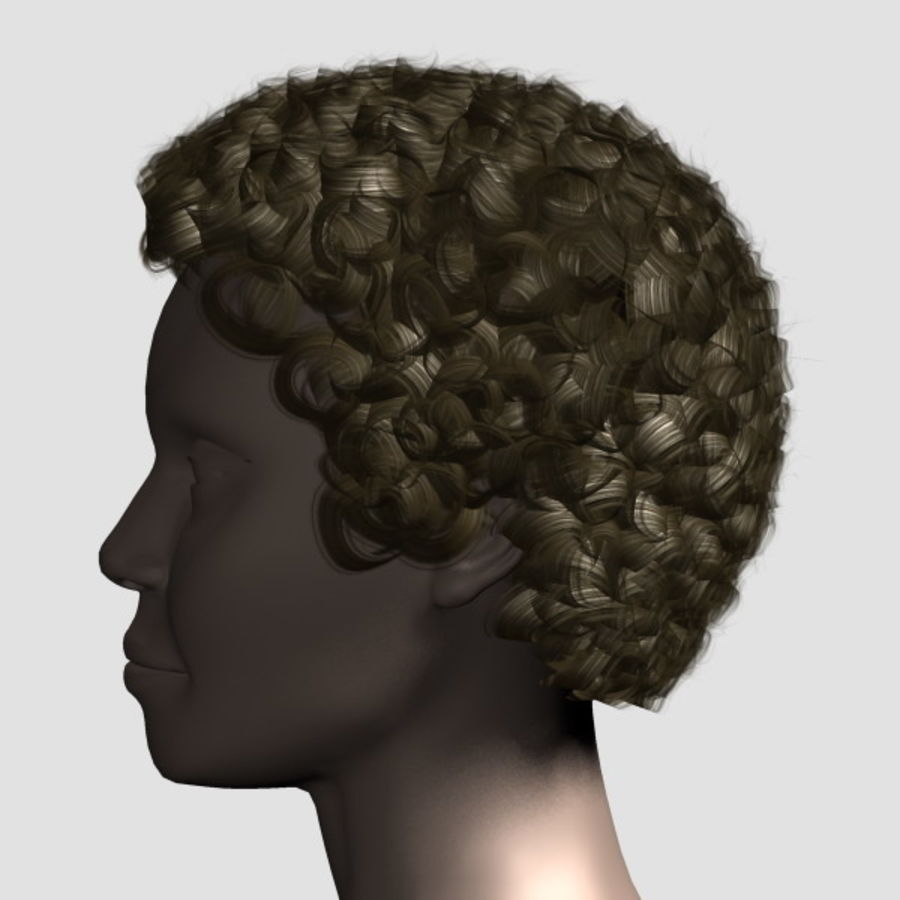 Hair_Mesh_07 royalty-free 3d model - Preview no. 2