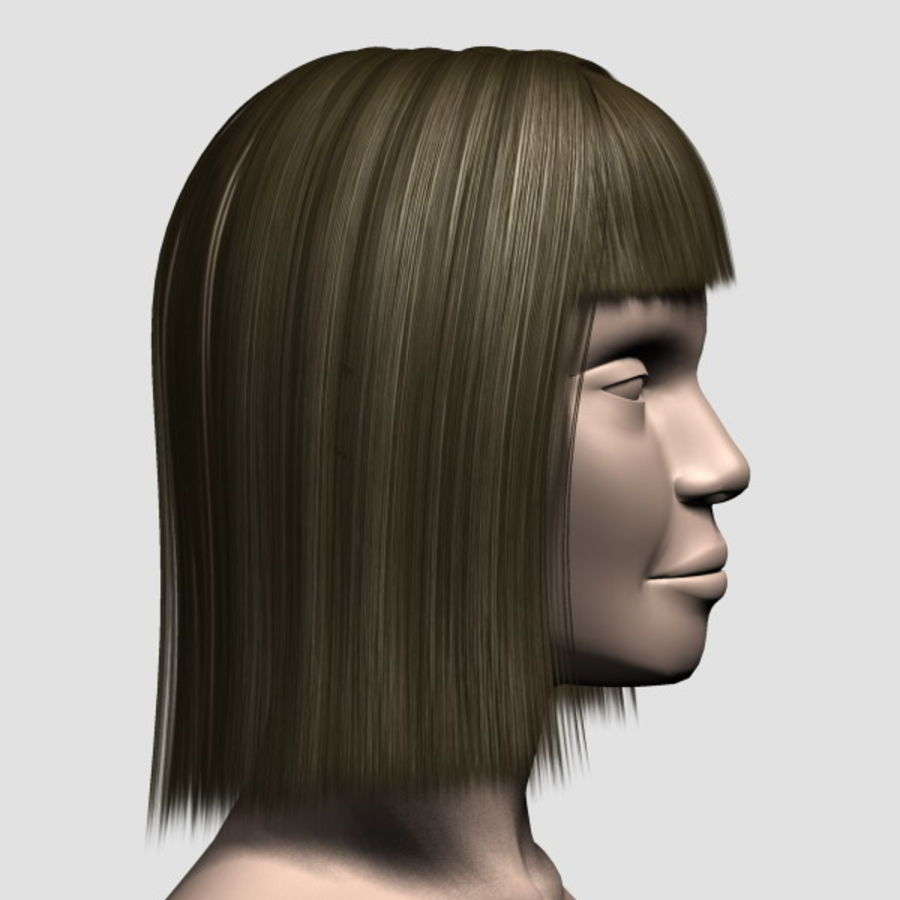 Hair_Mesh_09 royalty-free 3d model - Preview no. 4