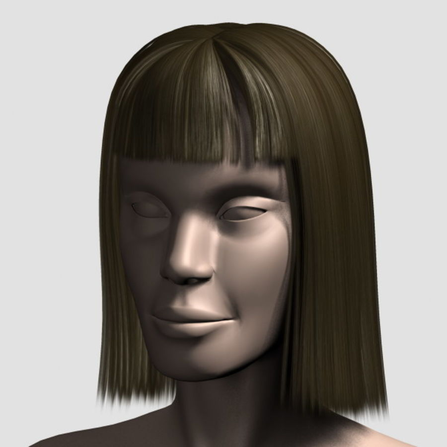 Hair_Mesh_09 royalty-free 3d model - Preview no. 1