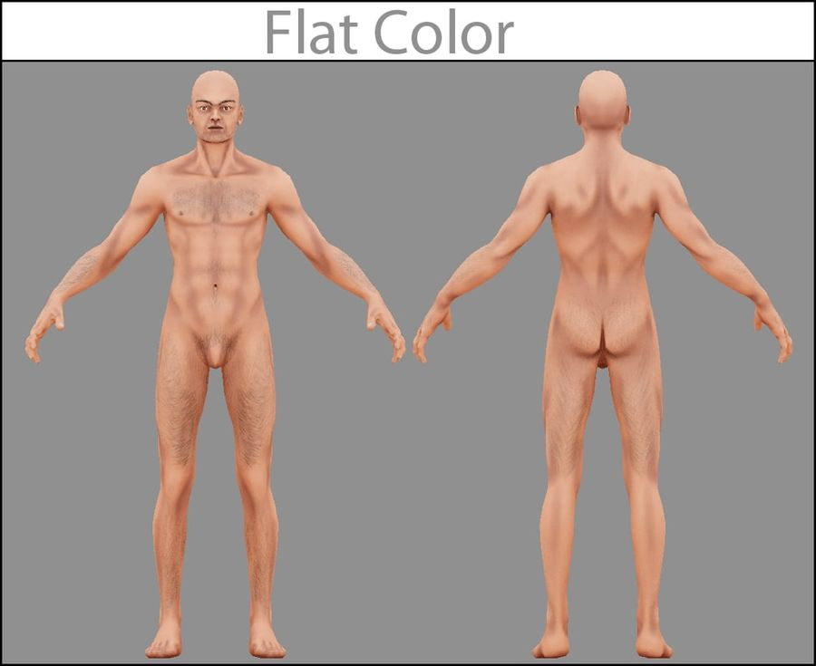 Human Male Bas Naked royalty-free 3d model - Preview no. 3