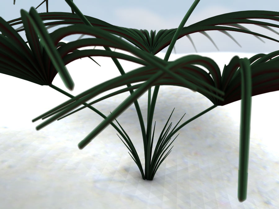 Tropical Plant royalty-free 3d model - Preview no. 7