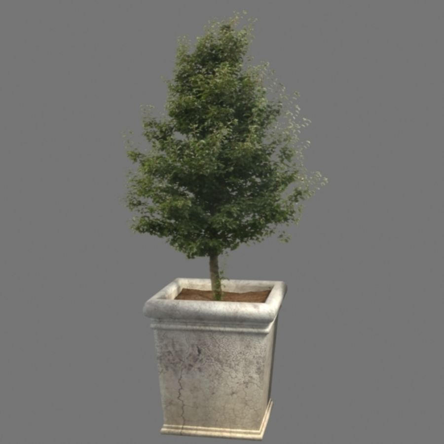 Deco Pot 11 royalty-free 3d model - Preview no. 2