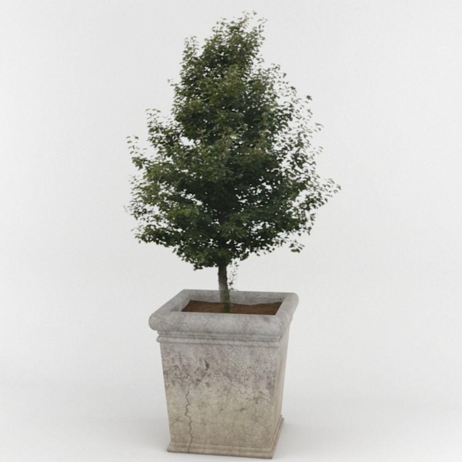 Deco Pot 11 royalty-free 3d model - Preview no. 1
