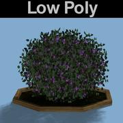 PL Low Poly Sweet Pea Shrub 3d model