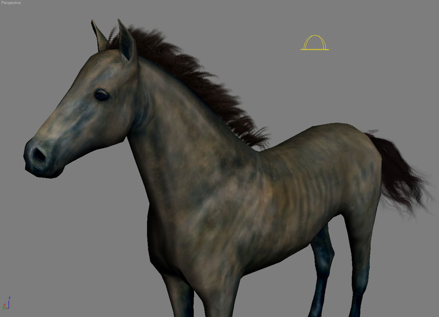 Horse andalusian royalty-free 3d model - Preview no. 9