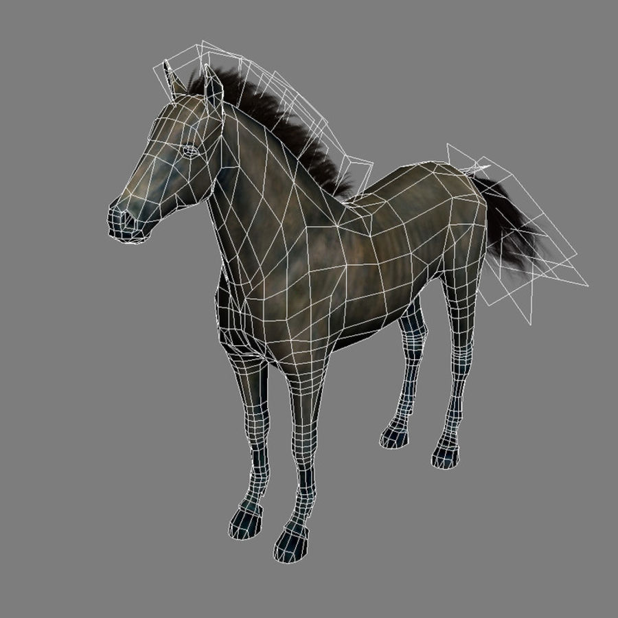 Horse andalusian royalty-free 3d model - Preview no. 6