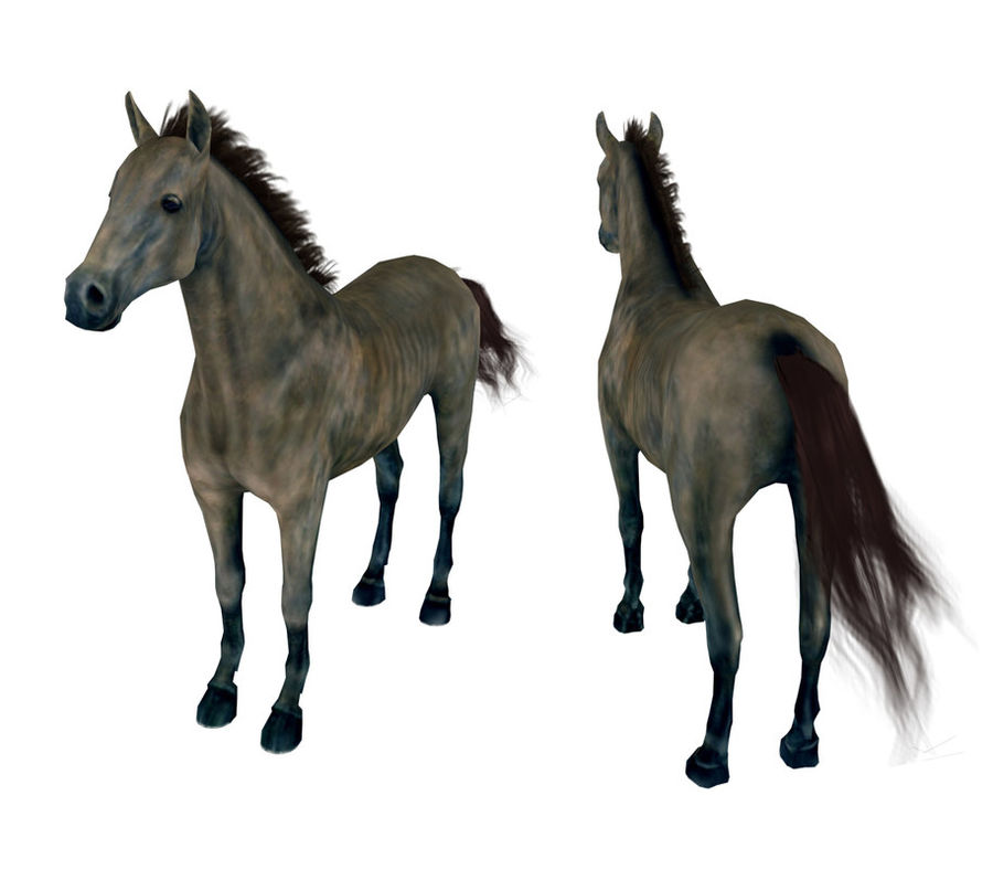 Horse andalusian royalty-free 3d model - Preview no. 2