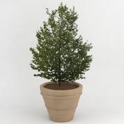 Deco Pot 23 3d model