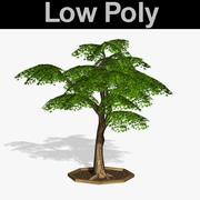 PL Low Poly Tree 66 3d model
