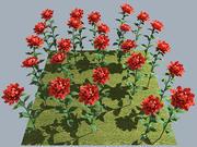 Flower Rose Red 3d model