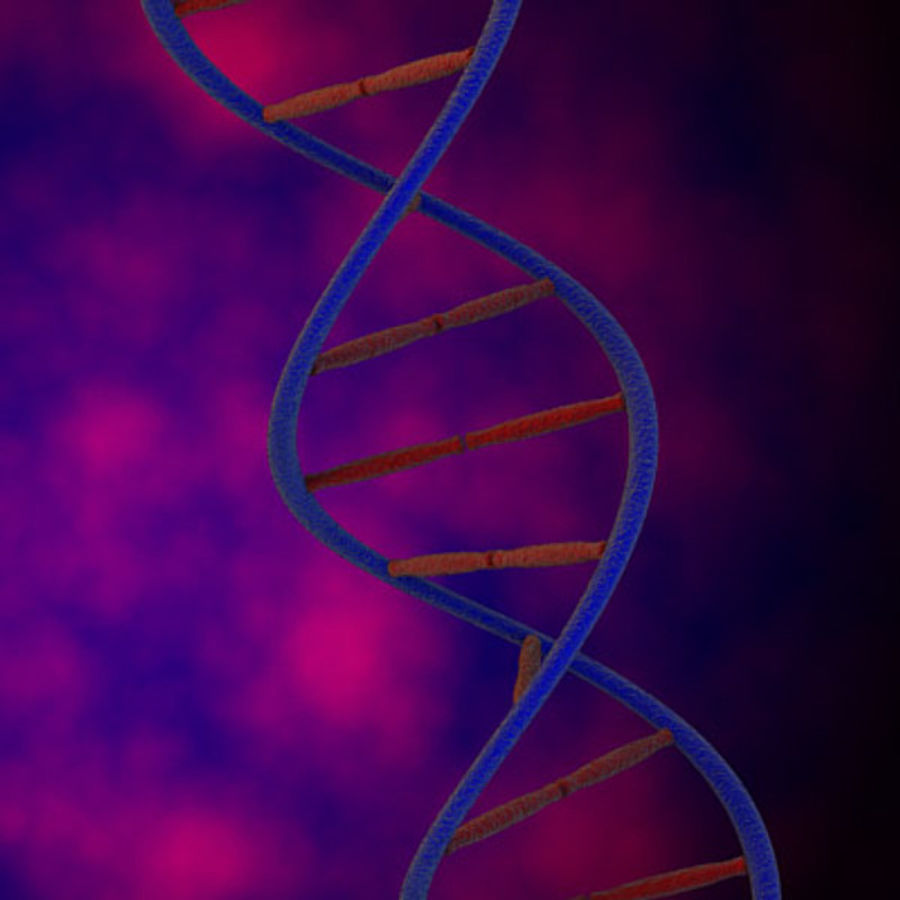 DNA royalty-free 3d model - Preview no. 4