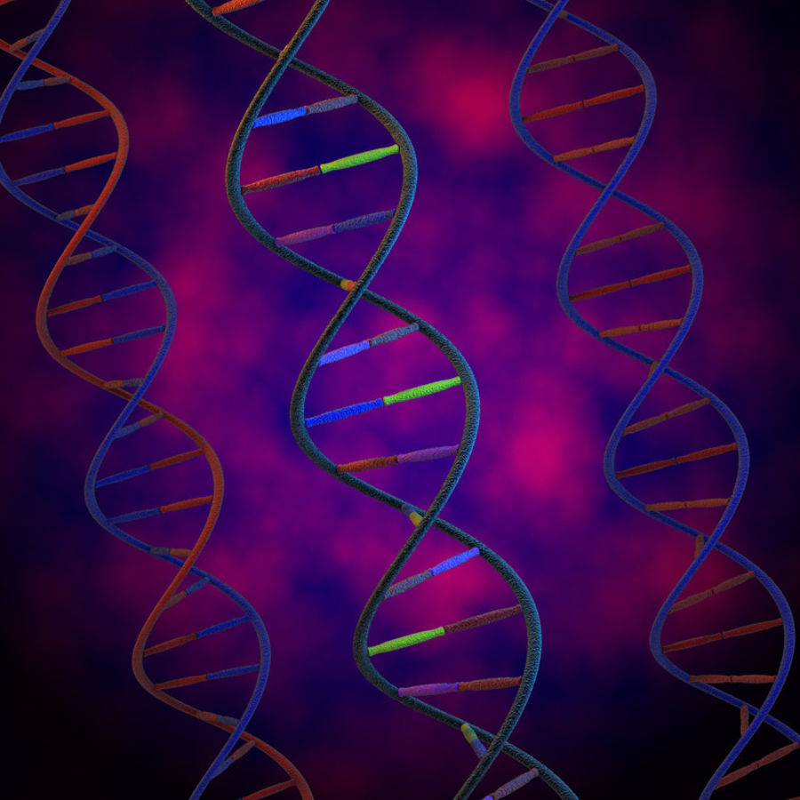 DNA royalty-free 3d model - Preview no. 2