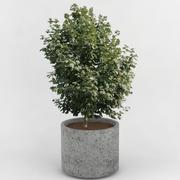 Deco Pot 24 3d model