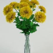 Chrysanthemums 3d model