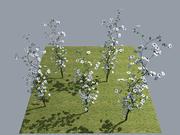 Flower Roses Climbing 3d model
