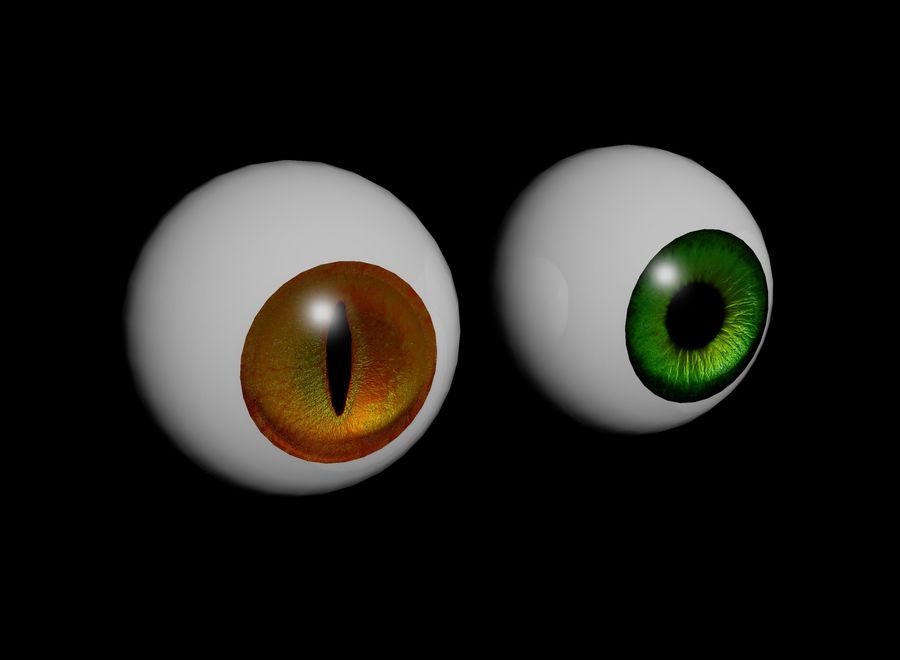 eyes royalty-free 3d model - Preview no. 9